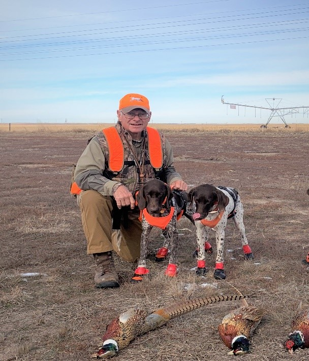 pointers pheasant hunting